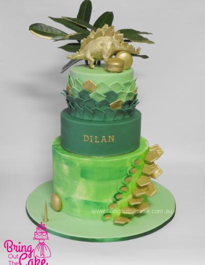 Stegosaurus cake, Dinosaur Cake, first birthday cake, Cake maker Berwick,