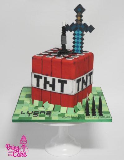 TNT Minecraft cake, Cake maker Berwick, Cake Decorator Berwick
